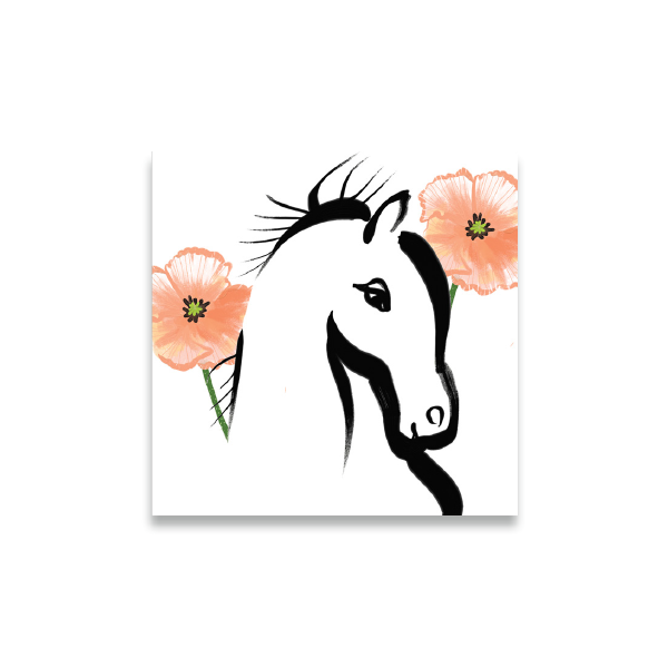 equestrian coasters horse with poppies boxed set