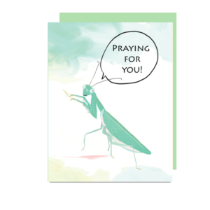 Praying Mantis Note Card